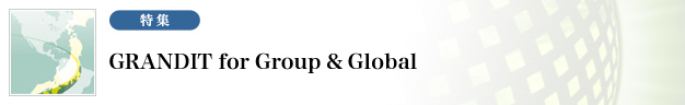 GRANDIT for Group & Global